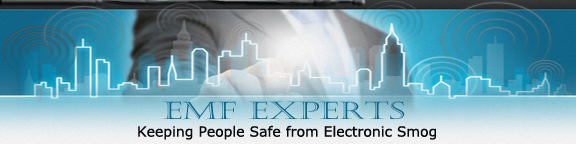 http://www.emf-experts.com/sd/image-files/header-bg8.jpg